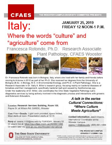 Flyer of Cultural Connections Italy