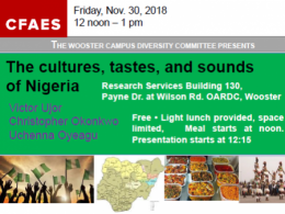The cultures, tastes, and sounds of Nigeria